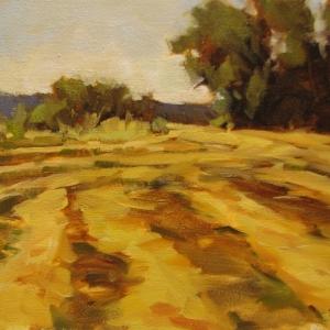 Woodland Hay Rows